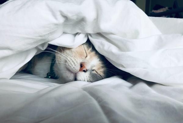 2.眠れない、寝付きが悪い人が行うNGな行動7つ
