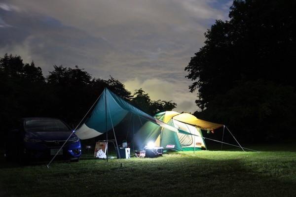 星空キャンプその②:星の降る森