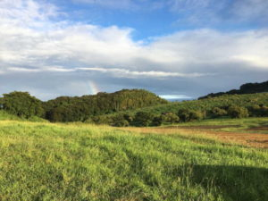 OSADA FARM(オサダファーム)