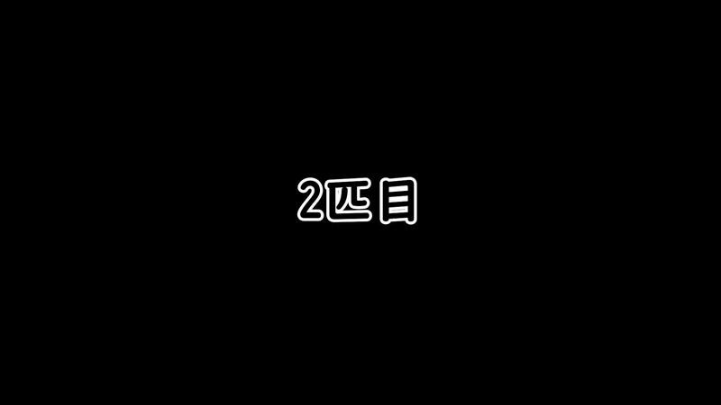 【仁王2】「桜禍の村」木霊2匹目
