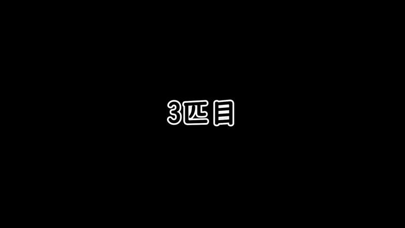 【仁王2】「桜禍の村」木霊3匹目