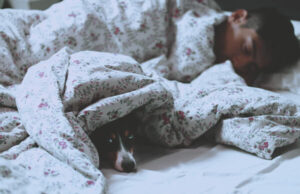 1.眠りが浅いと感じたらサプリに頼ろうという話